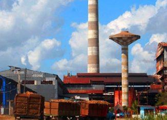 La diversificación de los usos de la caña de azúcar es necesaria, pues la fabricación exclusiva de azúcar está sin futuro.
