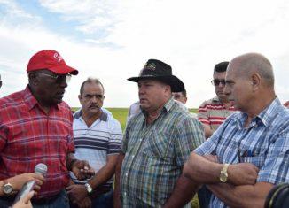 El primer vicepresidente cubano llamó a aumentar la capacidad de almacenamiento y la producción de fuentes de proteínas para la alimentación de la población.