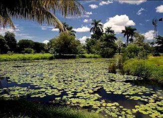 Incluye un recorrido por montañas, ríos, saltos de agua, ciénaga y el mundo subacuático, que Turnat prepara del 24 al 28 de septiembre sobre todo en la Ciénaga de Zapata.