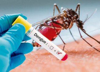 El programa científico contempla la conferencia: Situación actual del dengue y otros arbovirus emergentes: zika, chikungunya y fiebre amarilla.