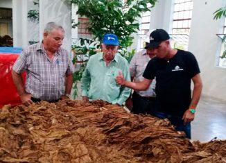 El Segundo Secretario del Comité Central del Partido visitó el Centro de proceso de tabaco en rama para la exportación de la Empresa de Acopio y Beneficio y el primer almacén con tecnología Metunas que se construye en la provincia.