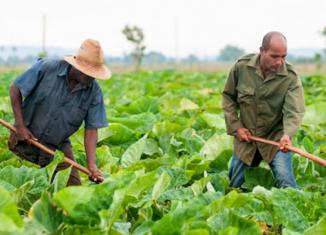 El proyecto, que cuenta con un financiamiento de 20 millones de euros, persigue incrementar de forma sostenible la producción de alimentos de calidad para responder a la demanda local.