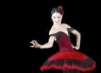 La recién nombrada directora fue aprendiz directa de Alicia, Fernando y Alberto Alonso, las llamadas cuatro joyas del ballet cubano (Josefina Méndez, Loipa Araújo, Aurora Bosch y Mirta Plá) y muchos otros maestros relevantes de la compañía.