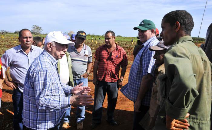 Aumentar la producción agrícola forma parte de la estrategia para alcanzar la soberanía alimentaria.