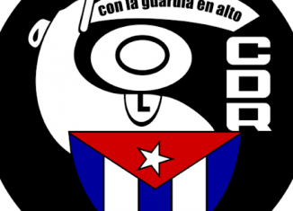 Vicecoordinador Nacional de los Comités de Defensa de la Revolución (CDR)