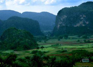 Odalys Caridad Goicochea Cardoso, directora de Medio Ambiente del CITMA, informó que se realiza el anuncio este viernes por ser el Día Mundial de la Biodiversidad. Como destacadas resultaron las provincias de Villa Clara, Camagüey y Granma.