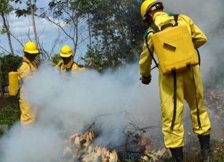 cvi 10052020 inicia semana proteccion incendios
