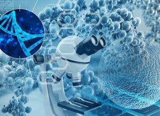 El Centro de Ingeniería Genética y Biotecnología y la Universidad de La Habana, firmaron un acuerdo para crear un laboratorio conjunto en Nanobiomedicina, para la ejecución de proyectos innovadores vinculados al diseño y obtención de fármacos.