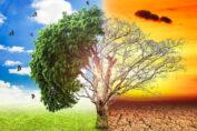 El Jefe de la diplomacia cubana, Bruno Rodríguez Parrilla, resaltó este lunes la urgencia de enfrentar con acciones concretas los efectos del cambio climático, ante el aumento acelerado de la temperatura del planeta.